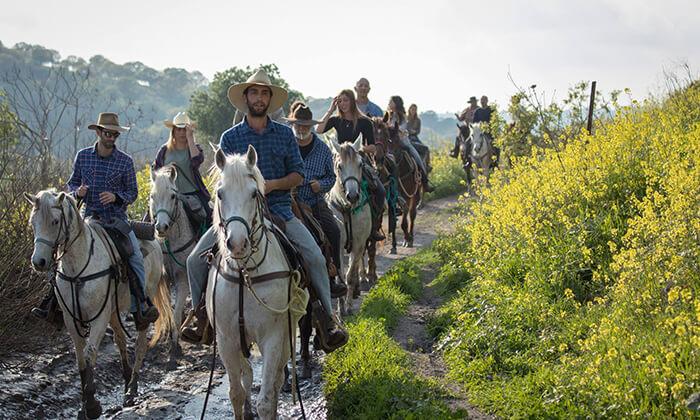 3 טיול רכיבת סוסים באזור רמות מנשה