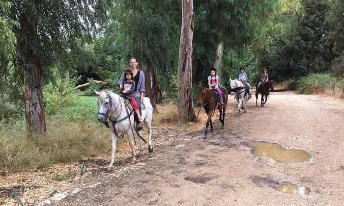 4 טיול רכיבת סוסים באזור רמות מנשה