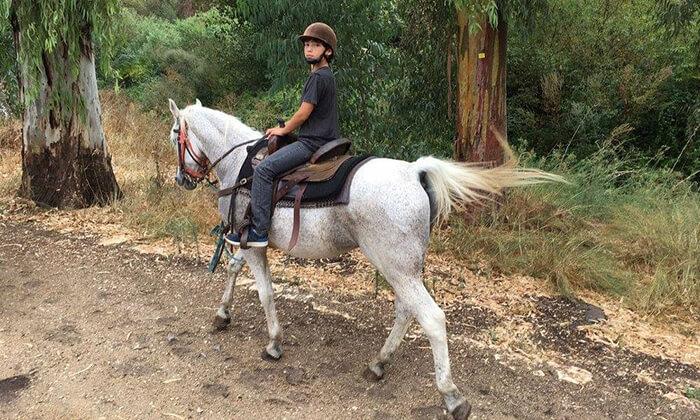 5 טיול רכיבת סוסים באזור רמות מנשה