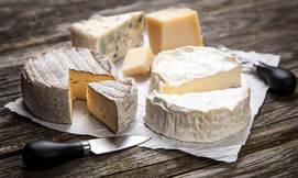 סדנה להכנת גבינות