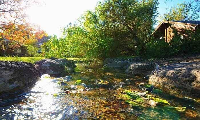 """3 כפר נופש בצפון, כולל סופ""""ש - שקט, שלווה והרבה ירוק"""