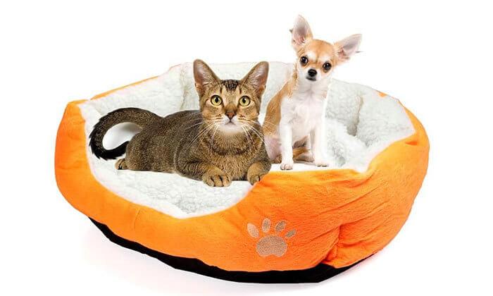 3 מיטת פליז לכלב או לחתול