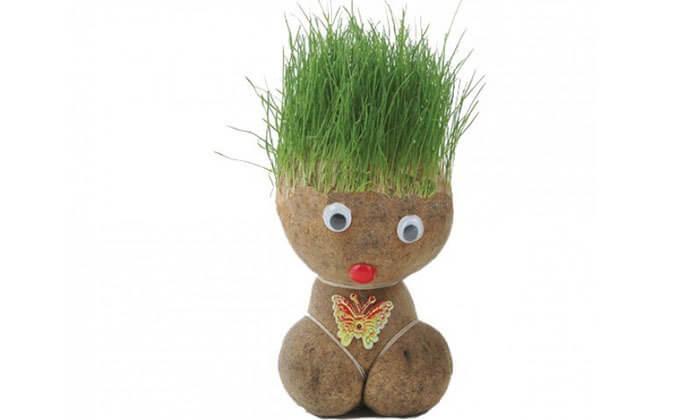 4 ראש דשא או ערכה להכנת צמחי תבלין