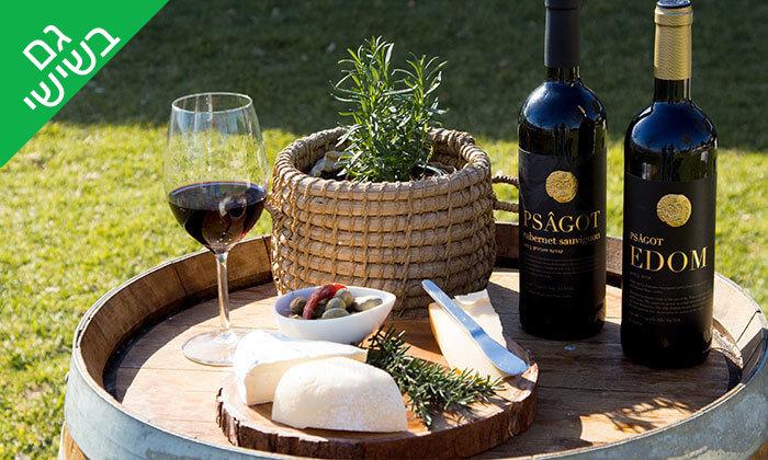 6 סיור טעימות גבינות ויין ביקב בוטיק פסגות, מרכז המבקרים נחלת בנימין