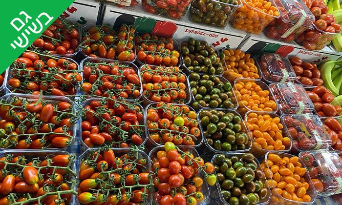 3 קטיף ירקות במתחם 'תות בשדה - משק אריאל' במושב קדימה