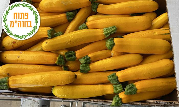 4 קטיף ירקות במתחם 'תות בשדה - משק אריאל' במושב קדימה