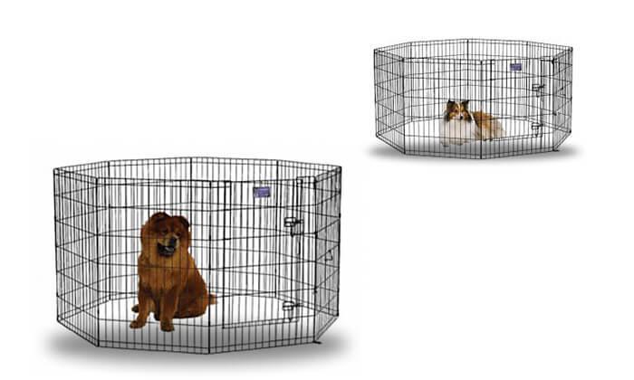 3 רשתות תיחום לכלבים