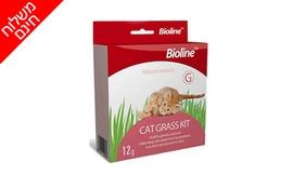 4 ערכות לגידול דשא מאכל לחתול