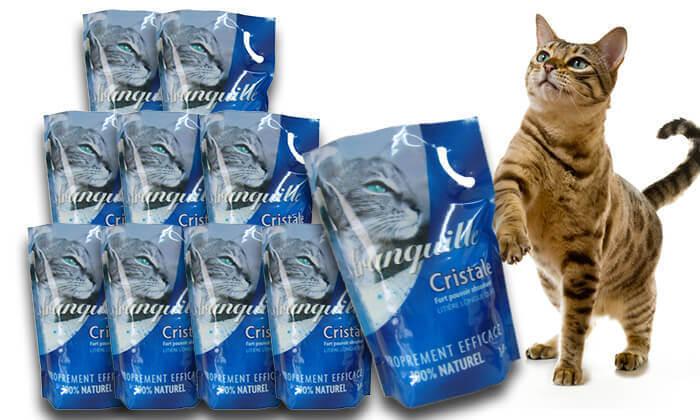 3 חול קריסטל לחתול