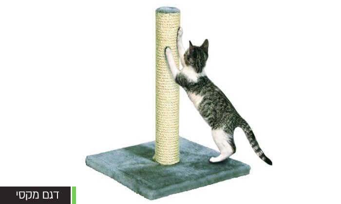 4 עמוד גירוד לחתול