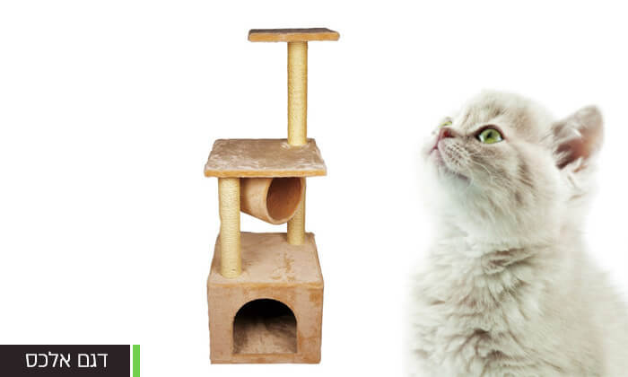 3 אניפט: עמוד גירוד לחתול - דגמים לבחירה