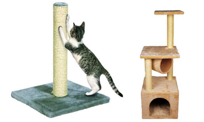6 עמוד גירוד לחתול