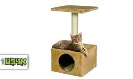 עמוד גירוד לחתול