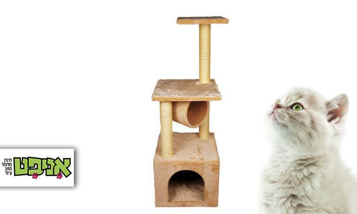 2 אניפט: עמוד גירוד לחתול - דגמים לבחירה