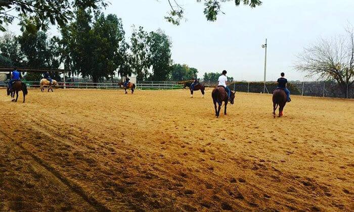 2 קייטנת רכיבה על סוסים בחופשת הפסח, ארנה מועדון רכיבה, כפר סרקין