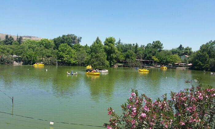 2 אגם חי בקיבוץ יראון - כרטיס כניסה לאתר הנופש והבילוי