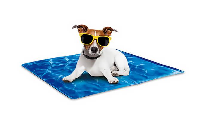 3 משטח קירור לחיות מחמד Pet Cool Mate - מבחר גדלים