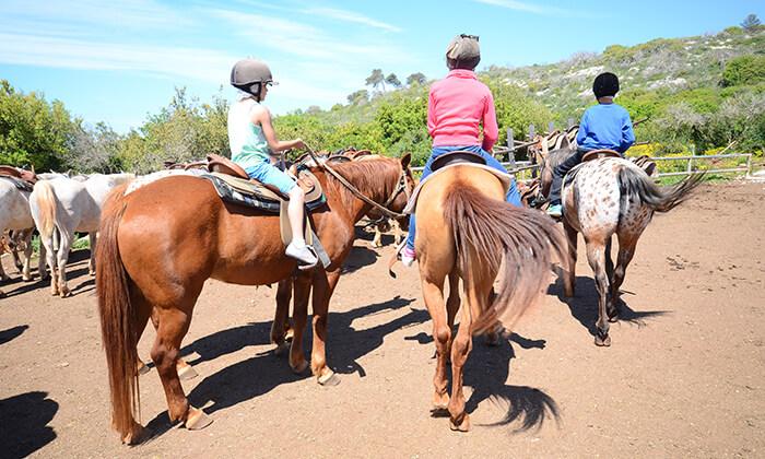 7  יום כיף למשפחות בחוות הרוכבים
