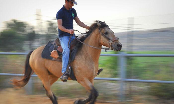 3 חוות צהלה - רכיבה על סוסים
