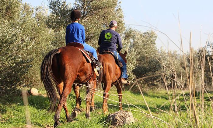 8 חוות צהלה - רכיבה על סוסים