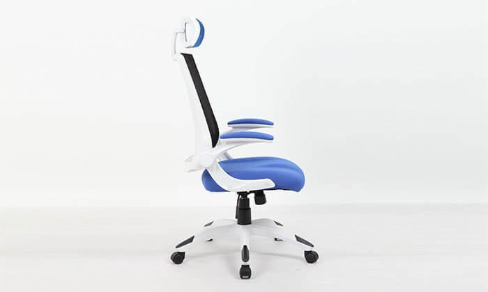 5 כסא מנהלים אורטופדי עם גב רשת