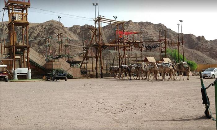 13 כניסה לפארק החבלים בחוות הגמלים אילת, כולל קפיצת בנג'ו