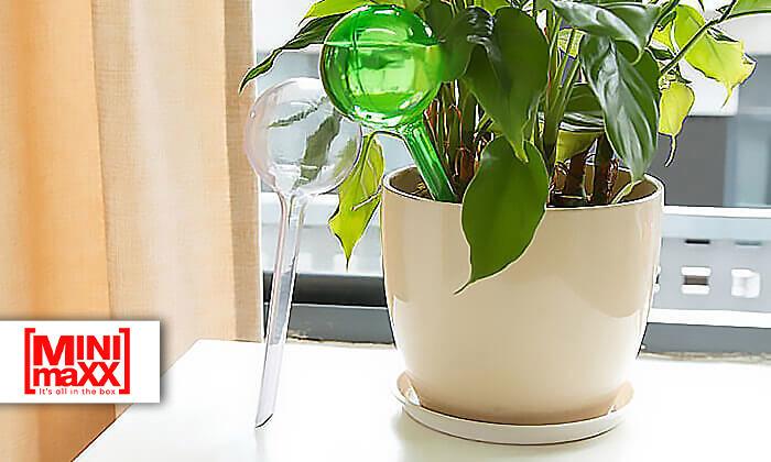 2 סט 6 בועות השקיה אוטומטיות לעציצים