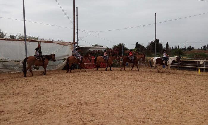 5 שיעורי רכיבה על סוסים בחווה של שון, גני יוחנן