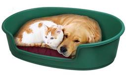 מיטה המתאימה לכלב או לחתול