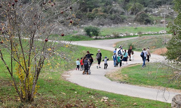 8 פארק נאות קדומים - כניסה והשתתפות בפעילויות לסוכות