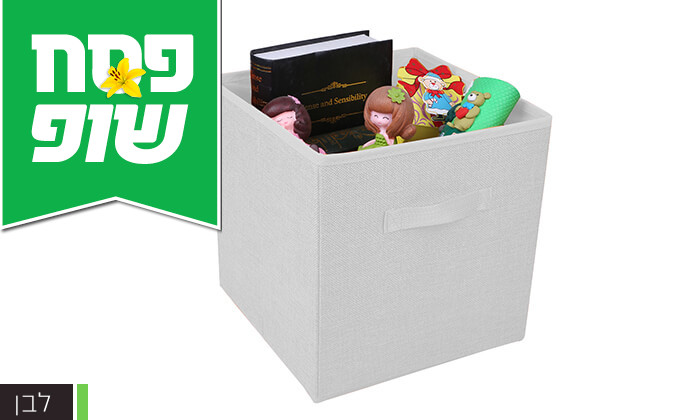 4 סט קופסאות אחסון Homax