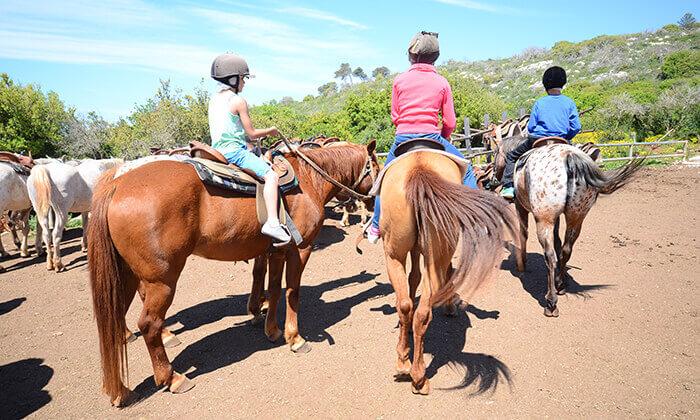 8 יום כיף בחוויית הרוכבים בבית אורן