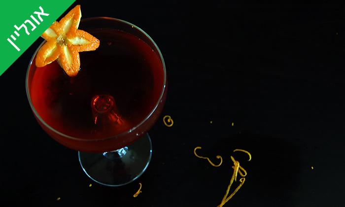 3 סדנת קוקטיילים LIVE עם Mixta Cocktails