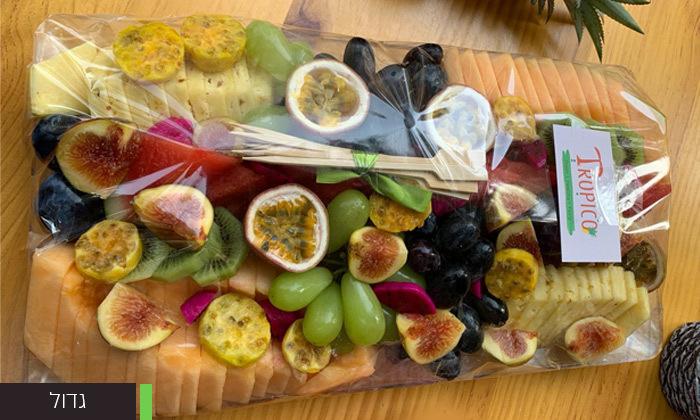 """מגש פירות בגודל 25x43 ס""""מ"""