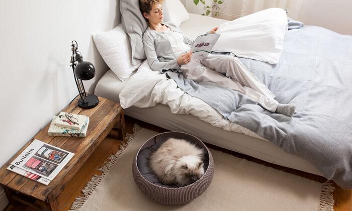 3 כתר: מיטת חתולים סרוגה בצבע בז'