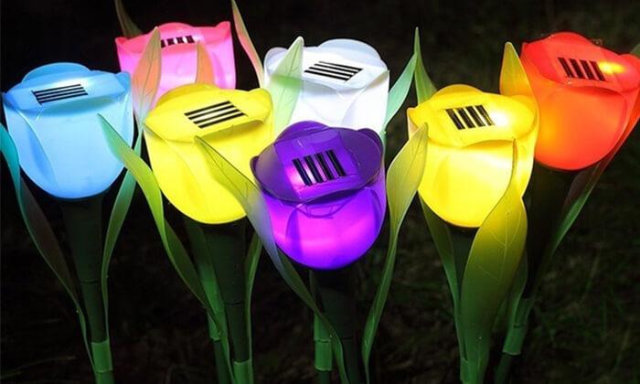 2 סט 6 מנורות טוליפ סולאריות
