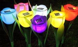 סט 6 מנורות טוליפ סולאריות