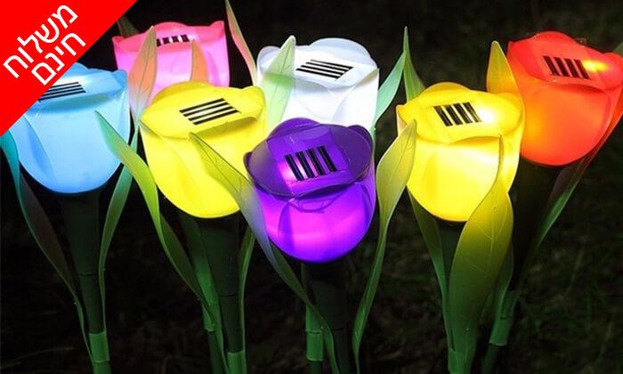 2 סט 10 מנורות טוליפ סולאריות - משלוח חינם