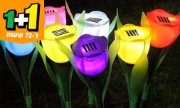 סט 5 מנורות טוליפ סולאריות