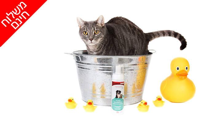 3 שמפו לכלבים ולחתולים ללא שטיפה Bioline - משלוח חינם!
