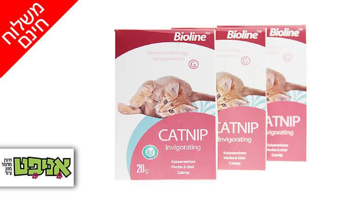 2 3 אריזות קטניפ לחתולים Bioline - משלוח חינם