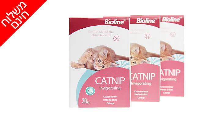3 3 אריזות קטניפ לחתולים Bioline - משלוח חינם