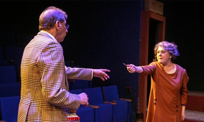 """8 כרטיס להצגה 'ברטוד ואגנס', תיאטרון הבימה ת""""א"""