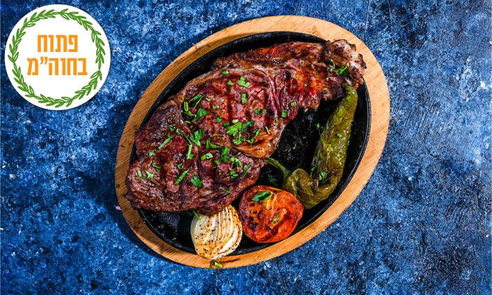 8 ארוחת ספיישל בשרים זוגית בסטלה ביץ' - דג על הים, בת ים
