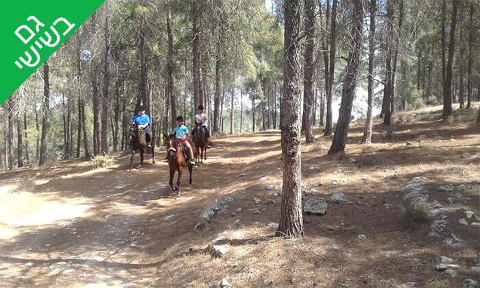 3 טיול רכיבה בגליל על סוסים - חוות סוסי אדמה, אלון הגליל