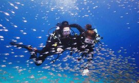 צלילת הכרות-מועדון Ahla Diving