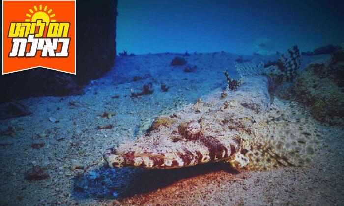 5 צלילת היכרות במועדון Ahla Diving,אילת