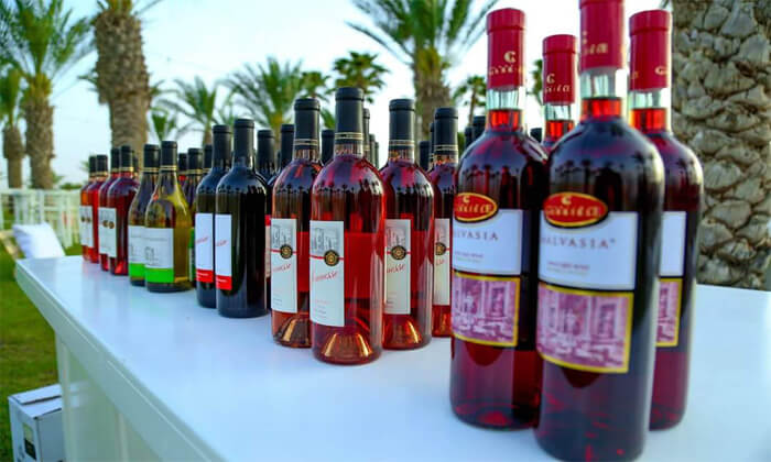 3 פסטיבל היין Salute 2021 - פארק שרונה תל אביב