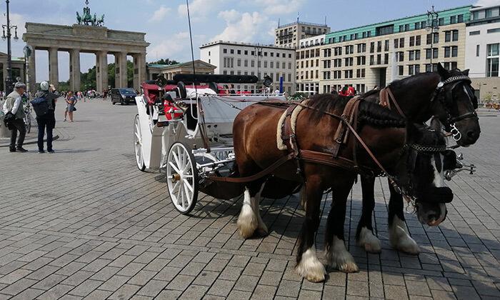 2 ברלין על כרכרת סוסים - סיור מודרך בין האתרים הכי שווים בעיר