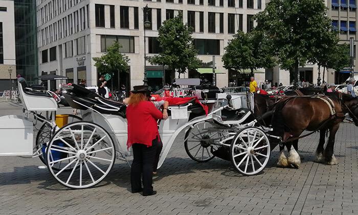 3 ברלין על כרכרת סוסים - סיור מודרך בין האתרים הכי שווים בעיר